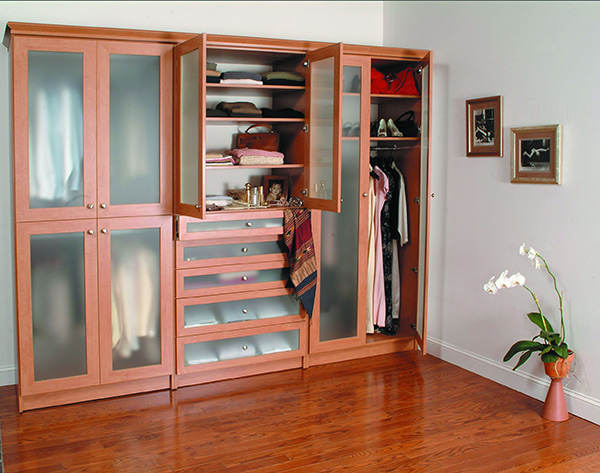 Custom wardrobe with wood finish and glass doors