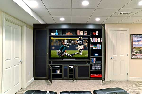 Organized media and entertainment center with door inserts