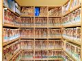Medical files organized on custom built cabinets and shelving