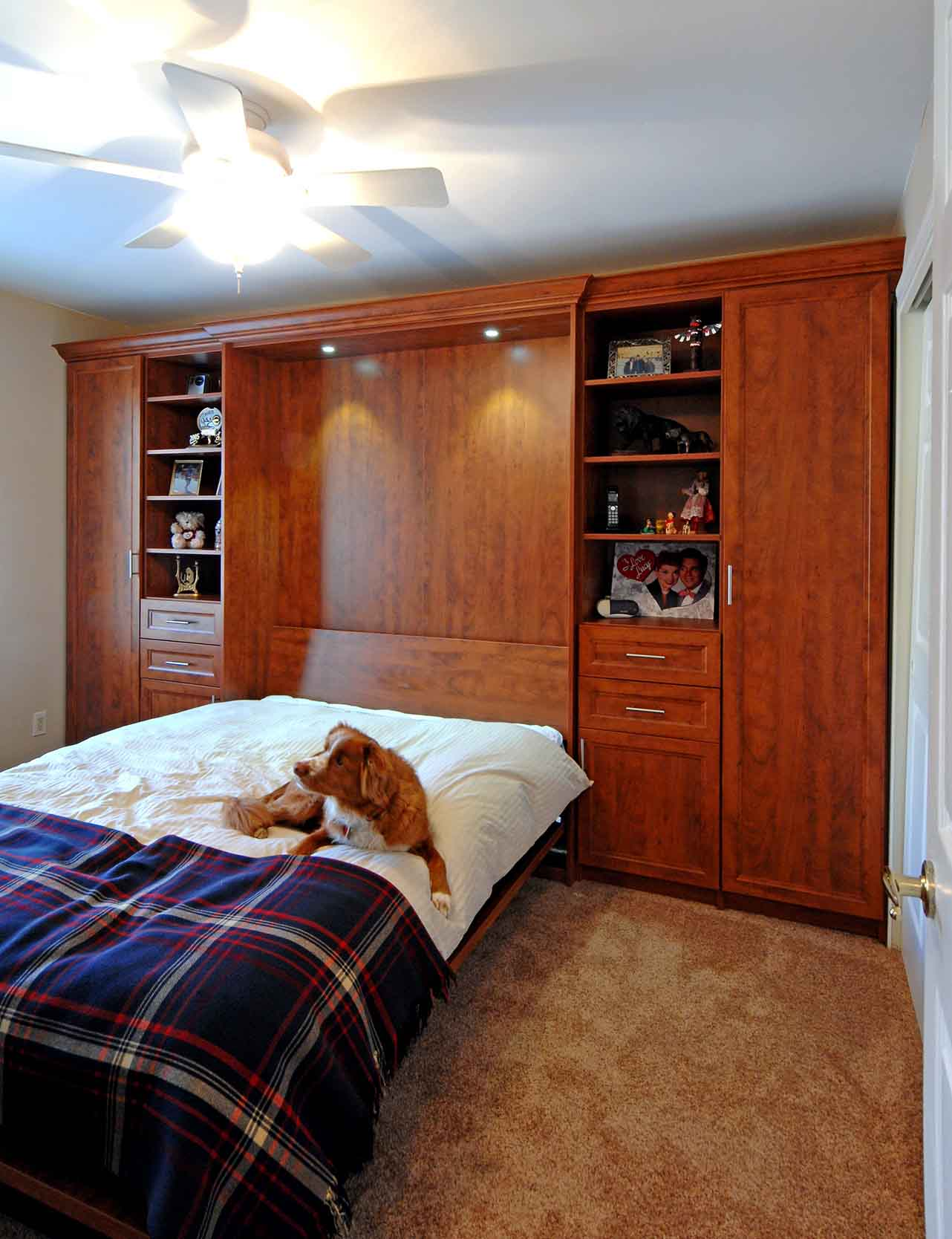 Dog laying on pull down queen-sized Murphy Bed