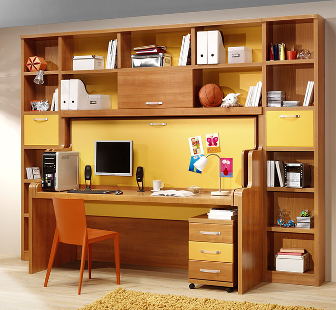 Hideawat bed and desk with items organized on custom shelves