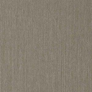 Latitude East Tafisa color option