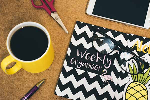 Planner and organizer book