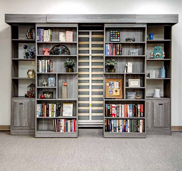 Bookshelf will sliding doors and wall bed folded up